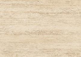 橡木02209