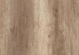橡木01205